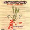 Glen View SDA Group - Rwizi jordan artwork