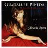 Ave Maria – Franz Schubert - Guadalupe Pineda