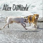 Alice DiMicele - Common Ground