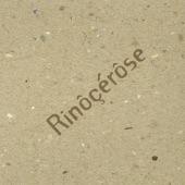 Rinôçérôse - Inacceptable