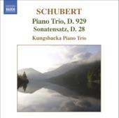 Kungsbacka Piano Trio - Piano Trio no. 2 in E flat major, Op. 100, D. 929: II. Andante con moto