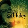 Cas Haley (Bonus Track Version) - Cas Haley