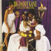 Big Daddy Kane - Ain't No Half-Steppin'