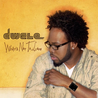 What's Not to Love - Single - Dwele