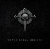 BLACK LABEL SOCIETY - Darkest Days (2010)