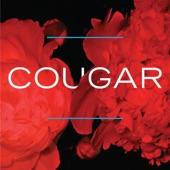 Cougar - Foil Epee Sabre