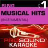 Sing Musical Hits, Vol.1 (Karaoke Performance Tracks) - ProSound Karaoke Band