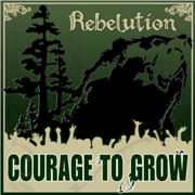 Safe and Sound - Rebelution - Rebelution
