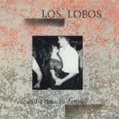 Los Lobos - Come On Let's Go