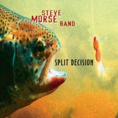 Steve Morse Band - Back Porch