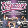 Los Teen Tops Grandes Exitos, Vol. 2