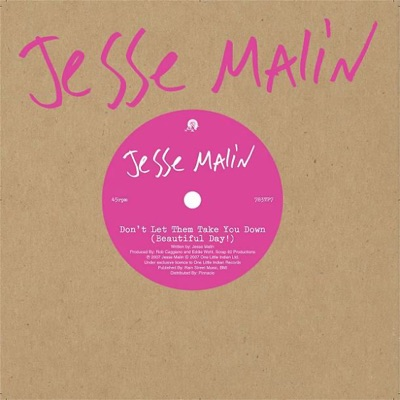Don't Let Them Take You Down (Beautiful Day!) - Single - Jesse Malin
