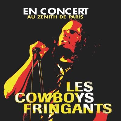 En concert au Zénith de Paris - Les Cowboys Fringants