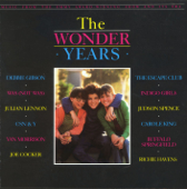 The Wonder Years (Music from the TV Show)