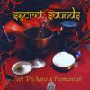 Veet Vichara & Premanjali - Om Mani Padme Hum  artwork