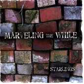The Starlings - Empty Boxcar