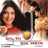 Dil Hi Dil Mein (Original Motion Picture Soundtrack)