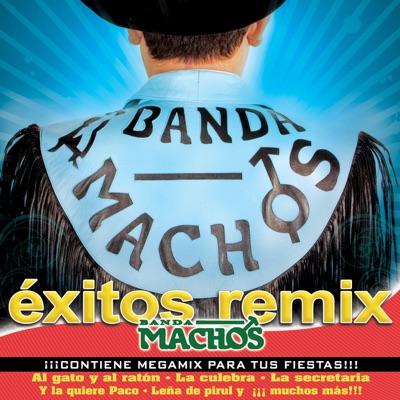 Éxitos Remix - Banda Machos