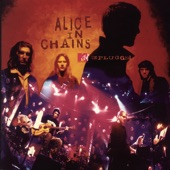 Alice in Chains - Brother (Album Version)