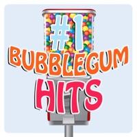 #1 Bubblegum Hits