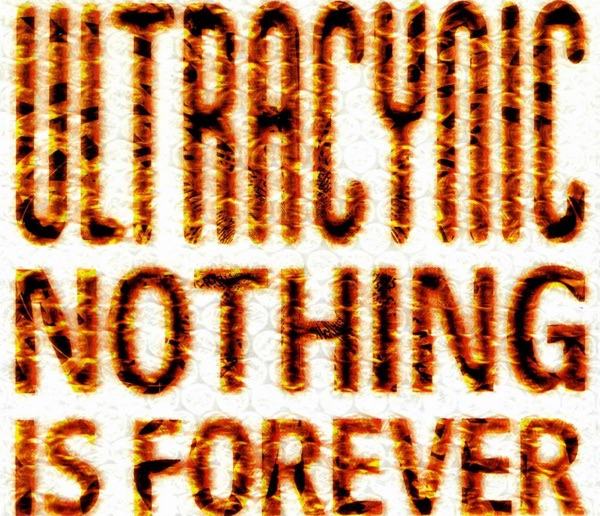 Cover art for Nothing Is Forever