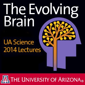 The Evolving Brain UA Science 2014 Lectures