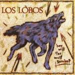 Los Lobos - Don't Worry Baby