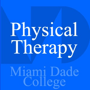 Cover image of Physical Therapy - Marlene Carmona - PHT 2701 Lab