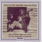 Never Let the Same Bee Sting You Twice - Blues, Ballads, Rags & Gospel In the Songster Tradition
