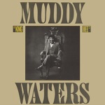 Muddy Waters - No Escape from the Blues