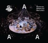 Arnaldo Antunes - Pedido de Casamento