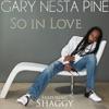 So in Love (feat. Shaggy) - Single, Gary Nesta Pine