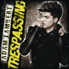 Adam Lambert - Outlaws of Love artwork