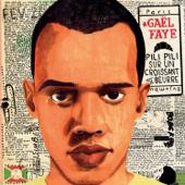 Métis - Gaël Faye