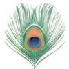 Audio CD (Apple Venus (pt.1)) ジャケット写真