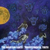 The Mountain Goats - Transcendental Youth Album