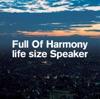 life size Speaker ジャケット写真