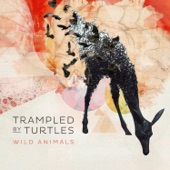 Trampled By Turtles - Nobody Knows