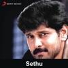 Sethu (Original Motion Picture Soundtrack) - EP