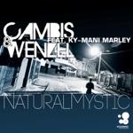 Cambis & Wenzel - Natural Mystic (Lissat & Voltaxx Dreadlock Remix)