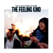 Thao & The Get Down Stay Down - You Can Have It All