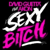 Sexy Bitch feat Akon Remixes 2 Single