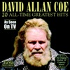 20 All-Time Greatest Hits (Re-Recorded Versions)
