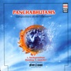 Panchabhutams Compositions On the 5 Elements
