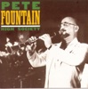 Tin Roof Blues (1992 Remastered)  - Pete Fountain