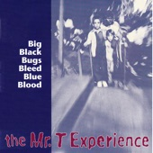 The Mr. T Experience - A Song About a Girl Who Went Shopping