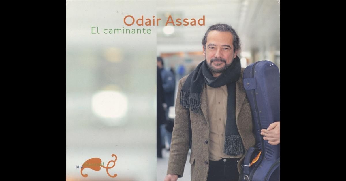 Odair Assad - El caminante