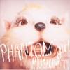 Phantom Girl's First Love - Single ジャケット写真