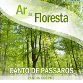 [Download] Canto de Pássaros na Primavera (Sons da Natureza) MP3