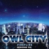 Fireflies (Karaoke Mix) - Single ジャケット写真